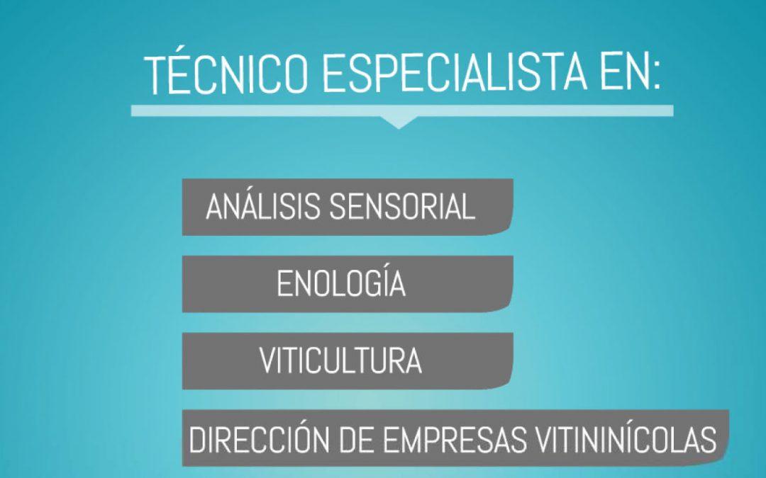 Curso de Técnico Especialista en Enología